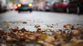 Leaves on the street - autumnal urban scene, traffic and cars in the background stock video