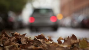 Leaves on the street - autumnal urban scene, traffic and cars in the background stock footage