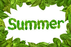 Leaves summer text in frame Stock Photo