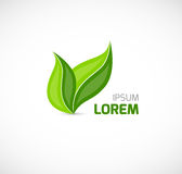 Leaves symbol Stock Photo