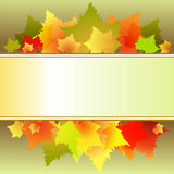 Leaves text box Royalty Free Stock Photo