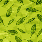 Leaves texture, green natural seamless pattern Stock Photo