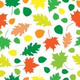 Leaves_texture_white Foto de Stock Royalty Free
