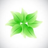 Leaves together illustration design Royalty Free Stock Images