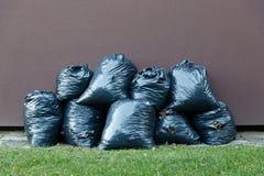 Leaves trash bag Stock Photography