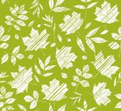 The leaves of the trees, seamless background, green, shading, vector. White leaves on a green field. Vector color pattern. The leaves are shaded diagonally a Stock Photos