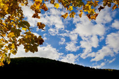 Leaves and treetops framing blue sky with clouds. An autumn scenery that consists of orange autumn leaves on the left side and the upper side, a hillside covered Stock Images