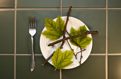 Leaves Twigs High Fiber Diet Food, Lose Weight. Humorous look at dieting, high cholesterol, and a high in fiber diet. Silverware and plate filled with leaves Royalty Free Stock Photos