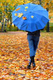 Leaves&umbrella-1. Fallen leaves on a cover of umbrella Royalty Free Stock Photo