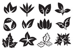 Leaves Vector Icon Set Stock Photo