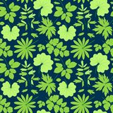 Leaves vector pattern. Stock Photography