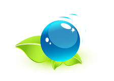 Leaves with water sphere. Nature, eco, bio concept. Vector illustration Royalty Free Stock Images