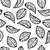 Leaves on white background Royalty Free Stock Images