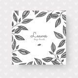 Leaves on white backgrounds. Grey leaves for invitations, wedding greeting cards, certificate, labels. Stock Photo