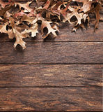 Leaves Wood Autumn Background royalty free stock photos