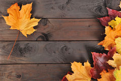 Leaves on wood Royalty Free Stock Photography