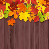 Leaves on wooden background. Autumn background Royalty Free Stock Images