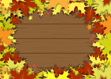 Leaves wooden board frame vector. Harvest berry rowanberry Royalty Free Stock Photo