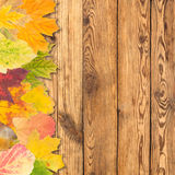 Leaves on a wooden boards Stock Image