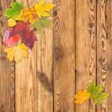 Leaves on a wooden boards Royalty Free Stock Images