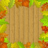 Leaves and wooden fence Stock Photo