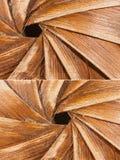 leavesswirls gör timmer tunnare Fotografering för Bildbyråer