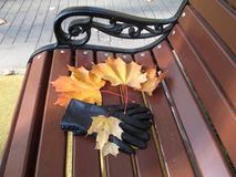 Leaving autumn. Leaves beautiful colored leaves. On the bench someone forgot gloves. People wait for nature will again flourish and bring warmth. While in the stock image