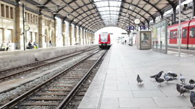 Leaving suburb train. Wiesbaden, Germany - October 17, 2014: Leaving suburb train of german railroad company DB at railroad station of Wiesbaden stock video footage