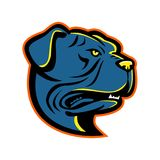 Leavitt Bulldog Head Mascot Royalty Free Stock Photos