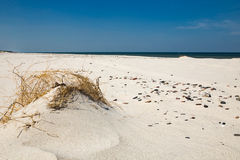 Leba, Dune with white sand hills in Poland, seaside, Baltic sea.. Stock Image