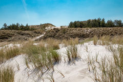 Leba, Dune with white sand hills in Poland, seaside, Baltic sea.. Royalty Free Stock Photography