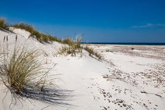 Leba, Dune with white sand hills in Poland, seaside, Baltic sea.. Royalty Free Stock Photo