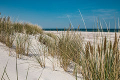 Leba, Dune with white sand hills in Poland, seaside, Baltic sea.. Stock Photo