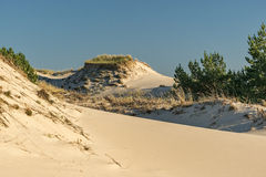 Leba dunes, Famous place in Poland. Stock Image