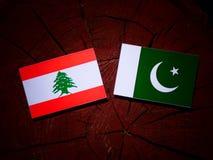Lebanese flag with Pakistan flag on a tree stump isolated. Lebanese flag with Pakistan flag on a tree stump royalty free illustration