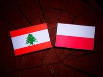 Lebanese flag with Polish flag on a tree stump isolated. Lebanese flag with Polish flag on a tree stump royalty free illustration