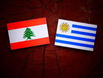 Lebanese flag with Uruguaian flag on a tree stump isolated stock images