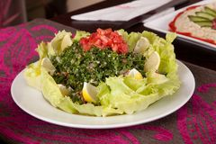 Lebanese oriental salad Royalty Free Stock Photos