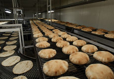 Lebanese pita bread on conveyor Stock Photos