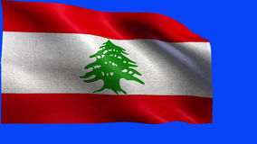 Lebanese Republic, Flag of Lebanese - LOOP Stock Photos