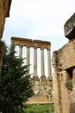 Lebanon. Baalbek ruins Stock Photography
