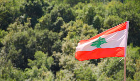 Lebanon Flag. Infront of nature green maountain Royalty Free Stock Image