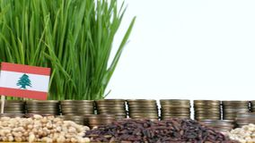 Lebanon flag waving with stack of money coins and piles of wheat. And rice seeds stock footage