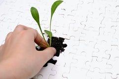 Leben als Puzzlespiel Lizenzfreies Stockfoto