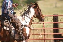 Leben auf der Ranch Stockbild