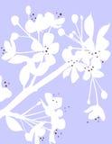 Leben-Blüte im Blau Lizenzfreie Stockbilder