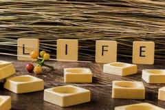 Leben in den Buchstaben Stockbild
