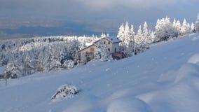 Leben der Schnee Lizenzfreies Stockfoto