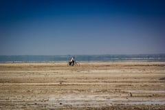 Leben in der Wüste von Indien Lizenzfreie Stockfotos