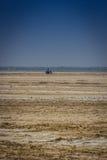 Leben in der Wüste von Indien Lizenzfreie Stockbilder